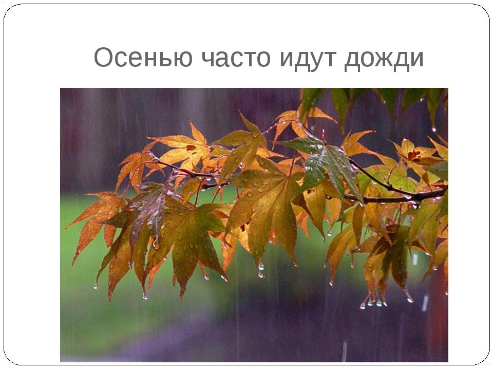 Осенью часто идут дожди
