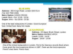 BLUE BIRD Address : 350 King's Road, London SW3 5UU (Tel: 020 7559 1000) Metr