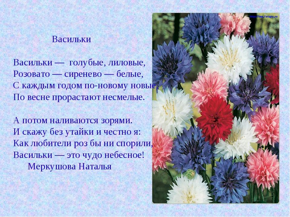 Васильки Васильки — голубые, лиловые, Розовато — сиренево — белые, С каждым...