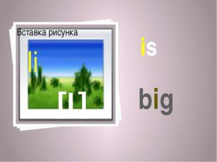 is [I] Ii big