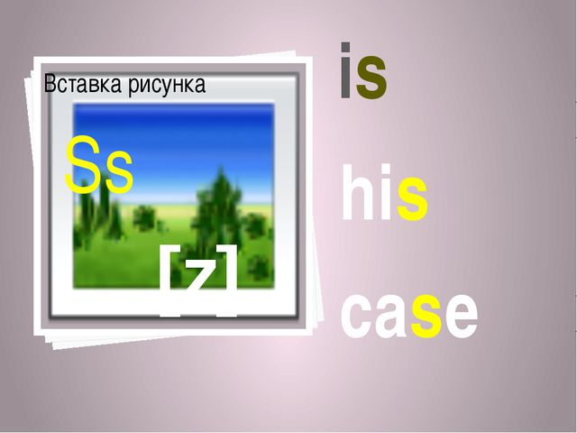 [z] Ss is his case