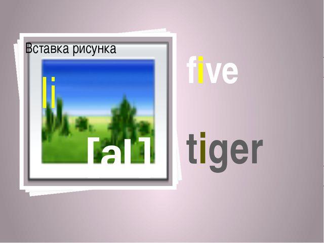 five [aI] Ii tiger