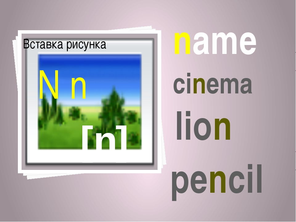 [n] N n name cinema lion pencil