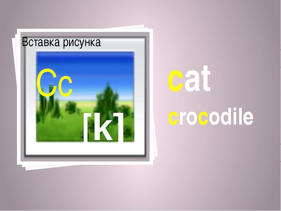 cat crocodile [k] Cc