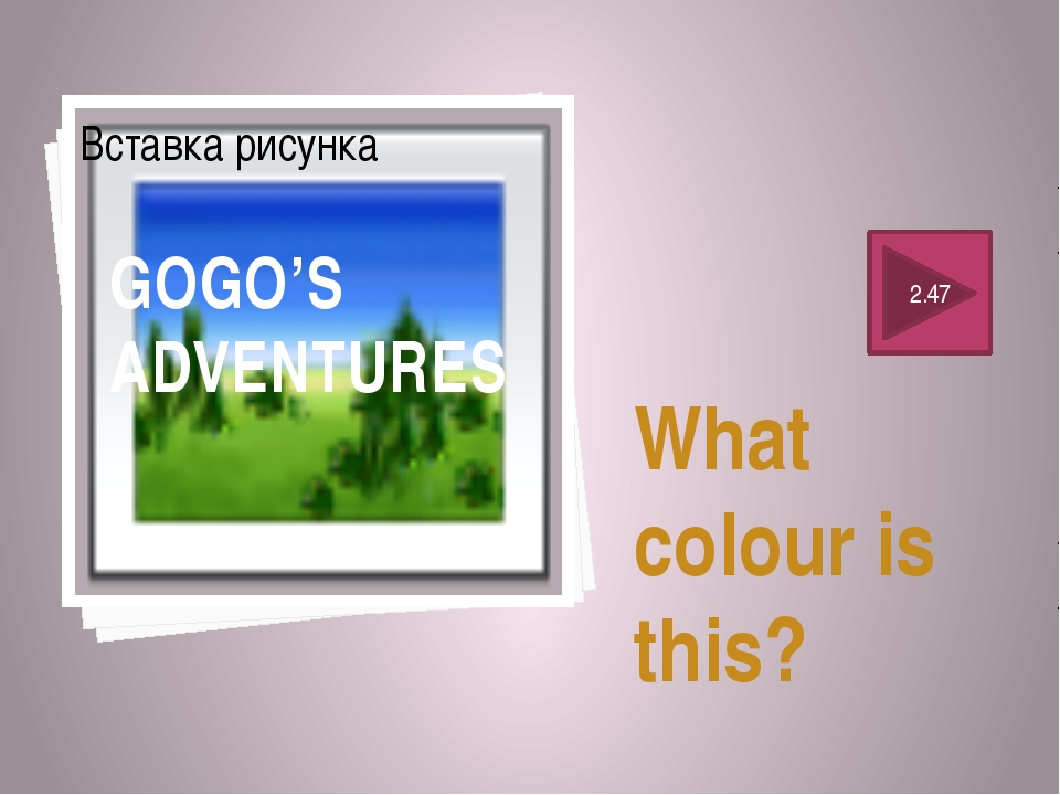 What colour is this? 2.47 GOGO'S ADVENTURES