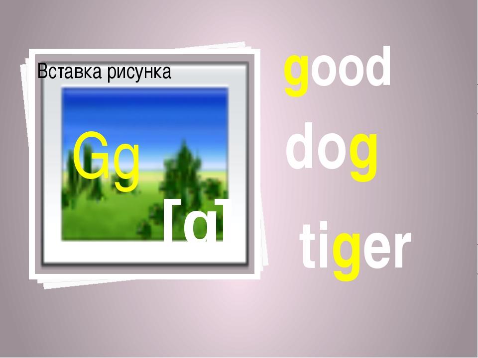 good dog [g] Gg tiger