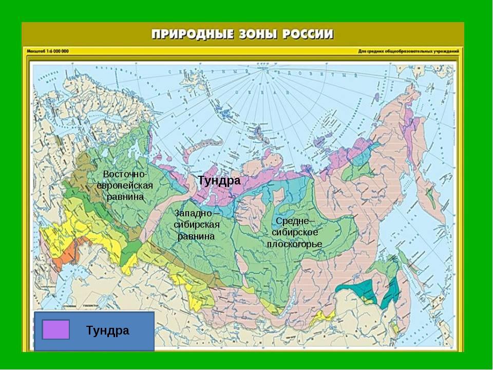 гдз природные зоны россии