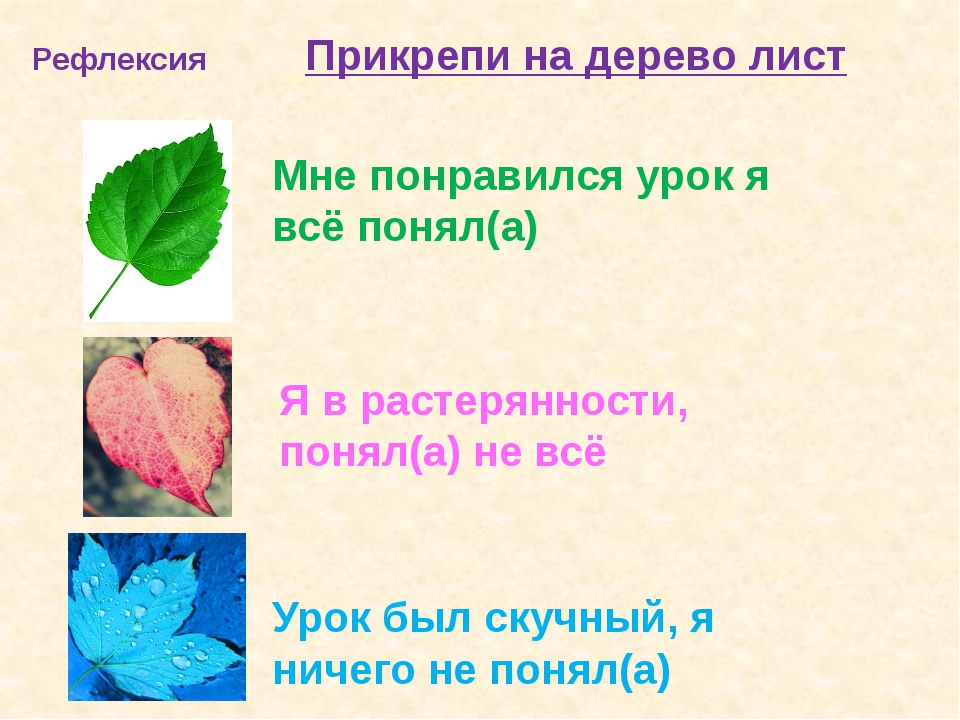 Рефлексия Прикрепи на дерево лист Мне понравился урок я всё понял(а) Я в раст...