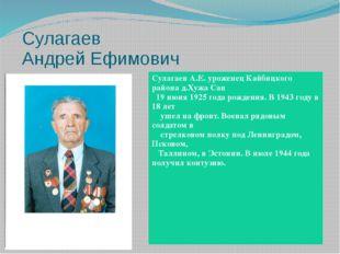 Сулагаев Андрей Ефимович СулагаевА.Е. уроженецКайбицкогорайонад.ХужаСан 19 и