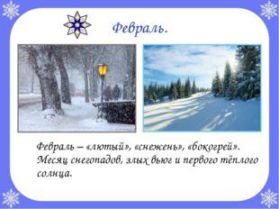 Февраль. Февраль – «лютый», «снежень», «бокогрей». Месяц снегопадов, злых вь