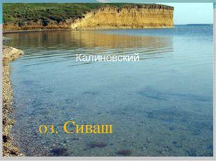 Калиновский оз. Сиваш
