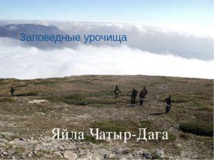 Заповедные урочища Яйла Чатыр-Дага