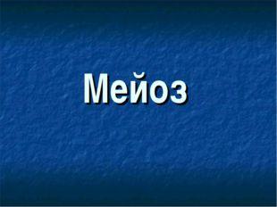 Мейоз