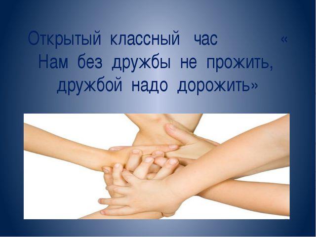 Открытый классный час « Нам без дружбы не прожить, дружбой надо дорожить»