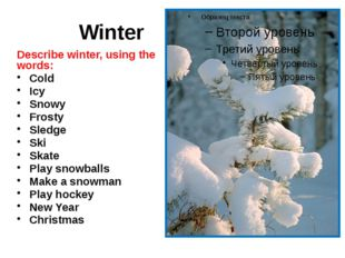 Winter Describe winter, using the words: Cold Icy Snowy Frosty Sledge Ski Sk