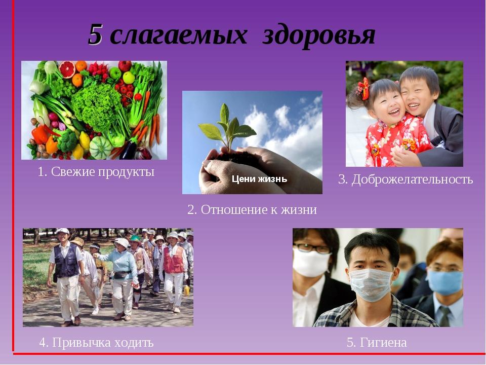 5 слагаемых здоровья 1. Свежие продукты 2. Отношение к жизни 5. Гигиена 3. До...