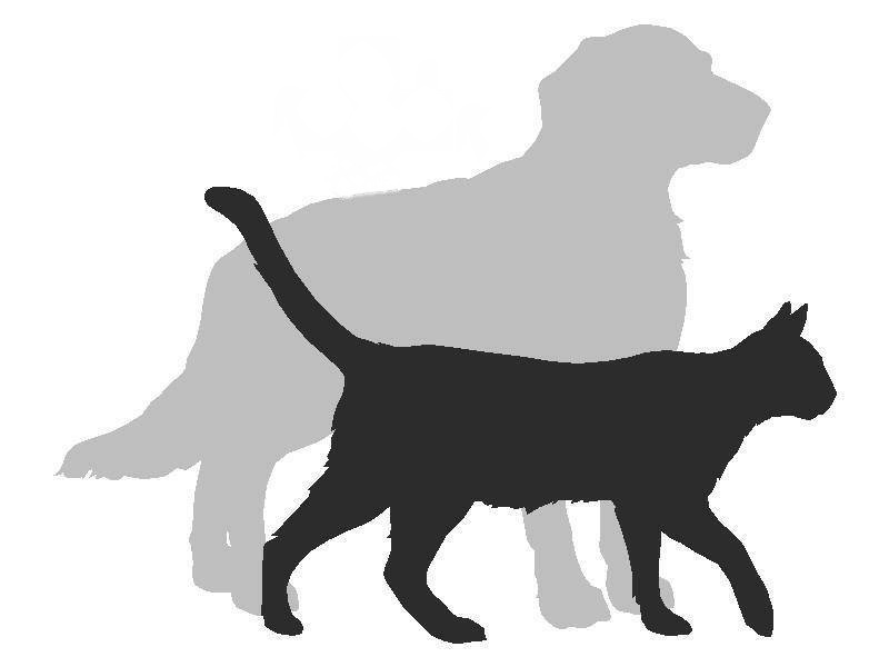 F:\drawing_of_cat_and_dog_rot_180_rot_180.jpg