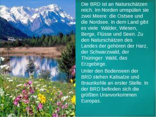Die BRD ist an Naturschätzen reich. Im Norden umspülen sie zwei Meere: die Os