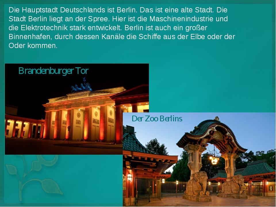 Die Hauptstadt Deutschlands ist Berlin. Das ist eine alte Stadt. Die Stadt Be...