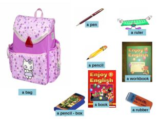 a bag a rubber a pen a pencil a book a workbook a pencil - box a ruler