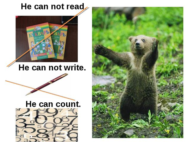 He can not read. He can not write. He can count.