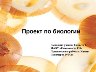 Проект по биологии Выполнил ученик 6 класса Б МАОУ «Гимназия № 139» Приволжск