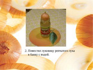 2. Поместил луковицу репчатого лука в банку с водой.