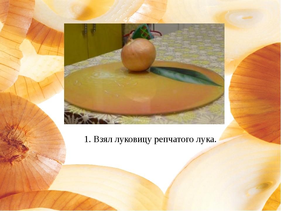 1. Взял луковицу репчатого лука.