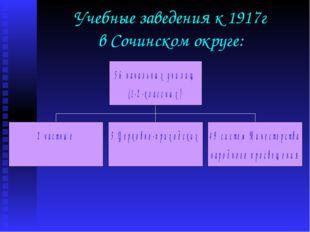 Учебные заведения к 1917г в Сочинском округе: