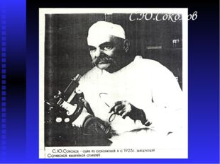 С.Ю.Соколов
