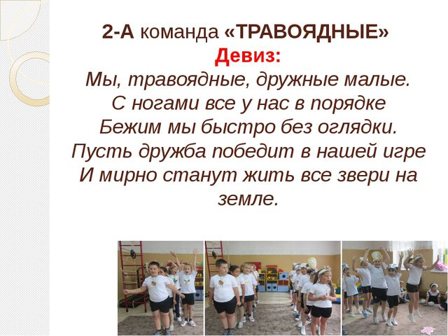 2-А команда «ТРАВОЯДНЫЕ» Девиз: Мы, травоядные, дружные малые. С ногами все у...