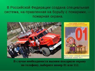 В Российской Федерации создана специальная система, направленная на борьбу с