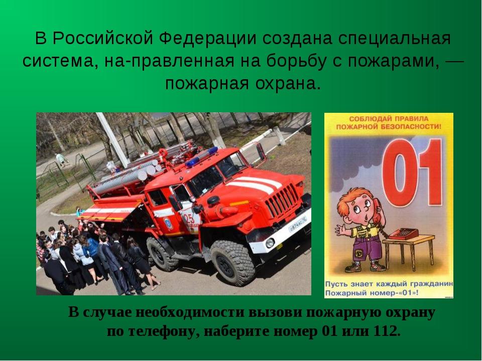 В Российской Федерации создана специальная система, направленная на борьбу с...