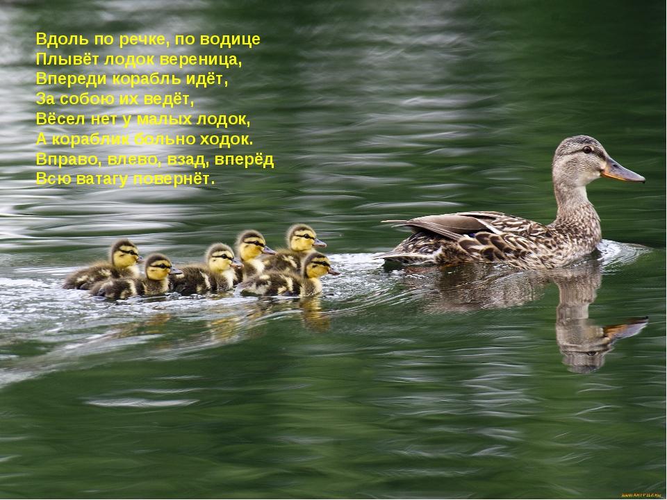 Вдоль по речке, по водице Плывёт лодок вереница, Впереди корабль идёт, За соб...