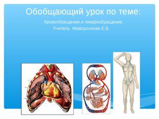 Обобщающий урок по теме: Кровообращение и лимфообращение. Учитель: Жаворонков