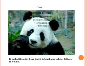 Panda It looks like a fat bear but it is black and white. It lives in China.
