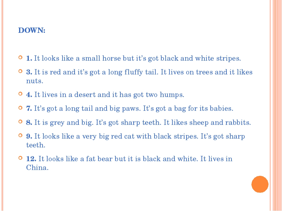 DOWN: 1. It looks like a small horse but it's got black and white stripes. 3....
