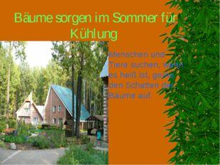 Bäume sorgen im Sommer für Kühlung Menschen und Tiere suchen, wenn es heiß is