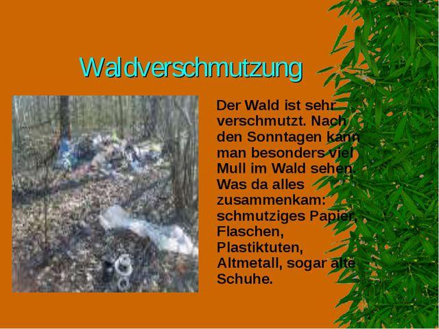 Waldverschmutzung Der Wald ist sehr verschmutzt. Nach den Sonntagen kann man...
