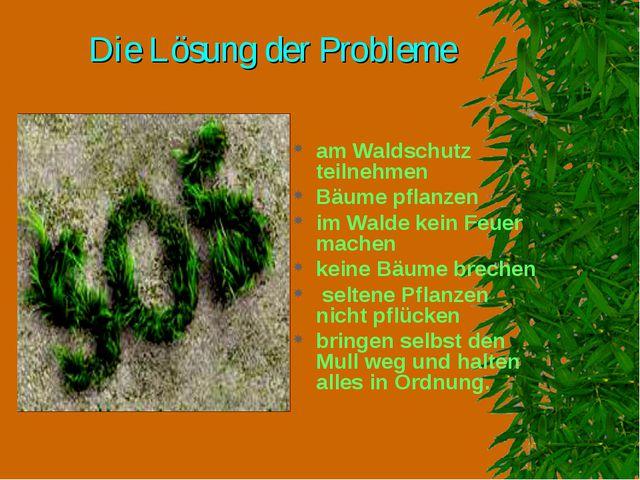 Die Lösung der Probleme am Waldschutz teilnehmen Bäume pflanzen im Walde kein...