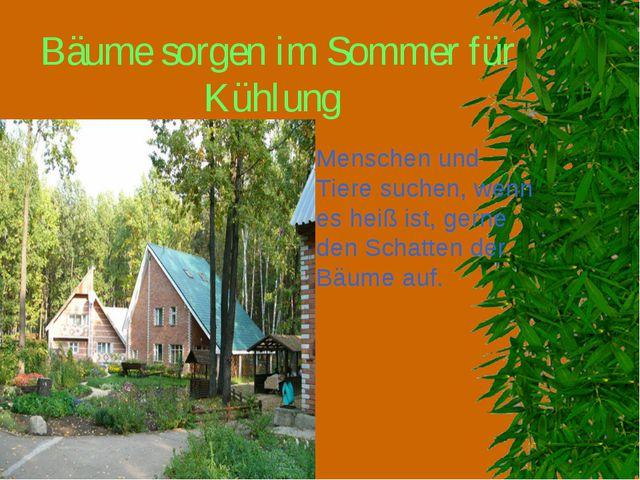 Bäume sorgen im Sommer für Kühlung Menschen und Tiere suchen, wenn es heiß is...