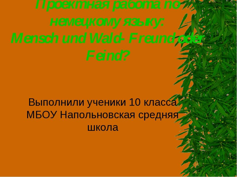Проектная работа по немецкому языку: Mensch und Wald- Freund oder Feind? Выпо...