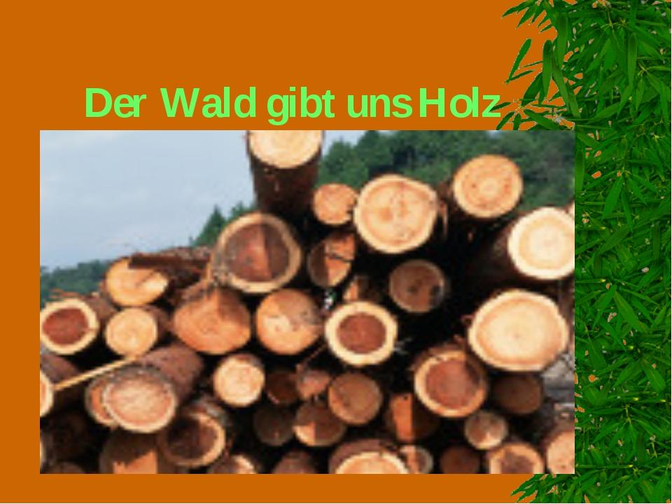 Der Wald gibt uns Holz