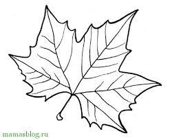 Картинки по запросу раскраска осенние листья распечатать