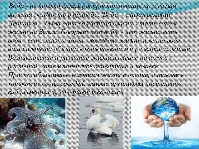 Вода - не только самая распространенная, но и самая важная жидкость в природе...