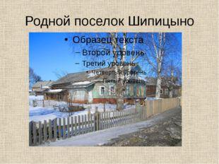 Родной поселок Шипицыно