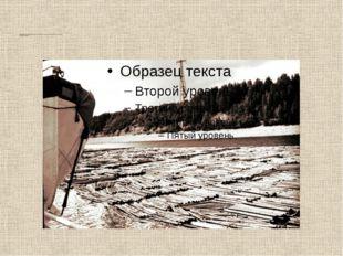 Аннотация: На Северной Двине ,Щепицыно . (В той деревне ,ниже Котласа формиро