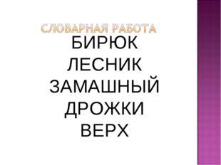 БИРЮК ЛЕСНИК ЗАМАШНЫЙ ДРОЖКИ ВЕРХ