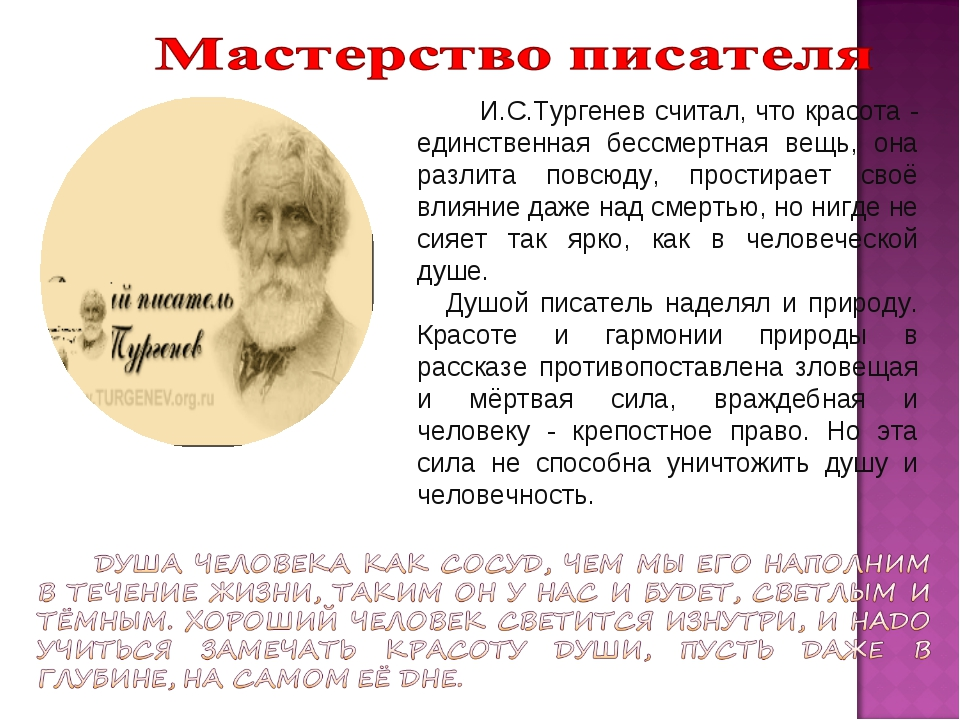 И.С.Тургенев считал, что красота - единственная бессмертная вещь, она разлит...