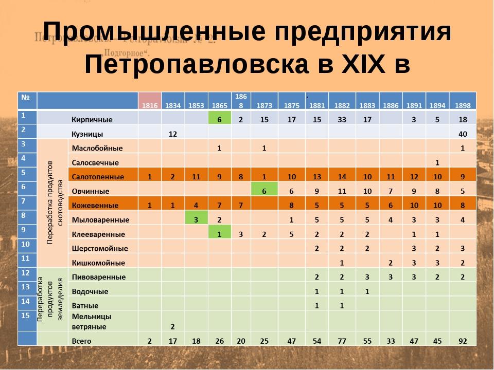 Промышленные предприятия Петропавловска в XIX в .